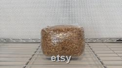 12 x 3lb Sterilized Oat Grain Mushroom Spawn Bags
