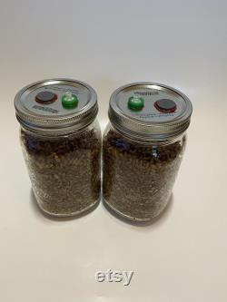 12x Hydrated and Sterilized Rye Grain Jars with Self-healing injection port and 0.2micron Syringe filter (1 Quart)
