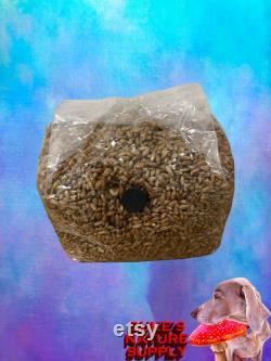 16 3lb Sterilized Rye Grain Spawn Bag with Injection Port and Synthetic Filter