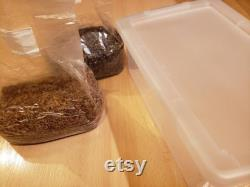 50 50 Monotub Kit 4lb Rye Spawn and 4lb Coco Substrate