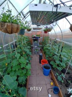 9x28 Heavy Duty Greenhouse kit, ClimaPod Virtue Series (6MM polycarbonate twin wall panels)
