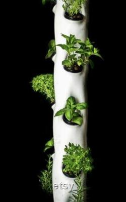 Agrowponics Home Growing System Dual Agrowtowers