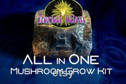 All in One, 4lb Compost Mushroom Bag, Grain, Coco Coir, Compost Manure Substrate, Everything but the Spores
