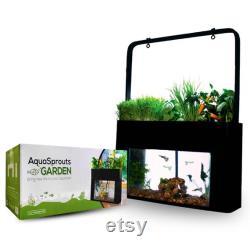 AquaSprouts Aquaponics garden