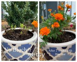 BioChar 25lb Organic Soil Amendment and Fertilizer For Fruits, Vegetables and Herbs and All Gardens
