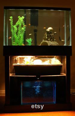Custom Indoor Aquaponic System
