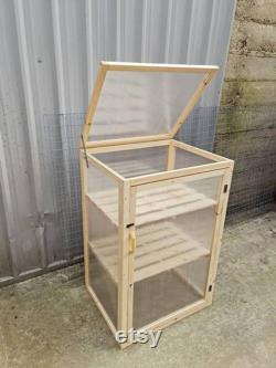 Green Grow House For Tomatoes Cucumbers Any Vegetables With Two Shelves