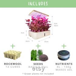 Indoor Smart Garden, 12 Plants The TerraGarden