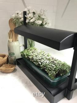 Microgreens Grow System Grow Light Compact Table Top and Self Watering System Hydroponic Micro Mix Soil 4 Organic Microgreen Seeds