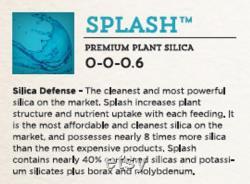 Splash 1 gallon Monosilicic Acid Silica