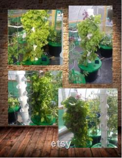 Vertical Hydroponic Aeroponic Grow Tower