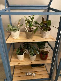 Wooden Cold Frame DIY Greenhouse